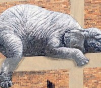 5 street art cities | Art-Pie