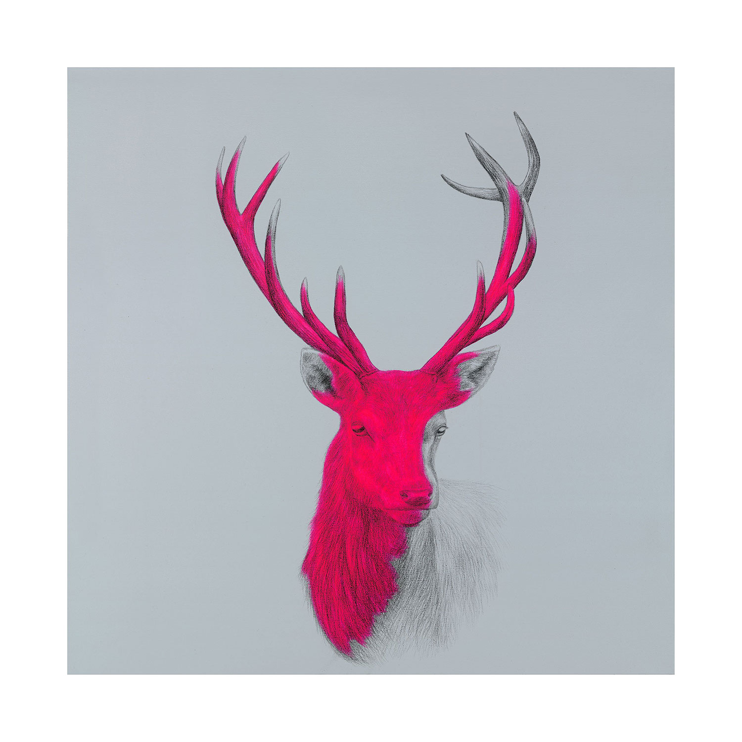 Wildly sublime by Louise McNaught | Art-Pie