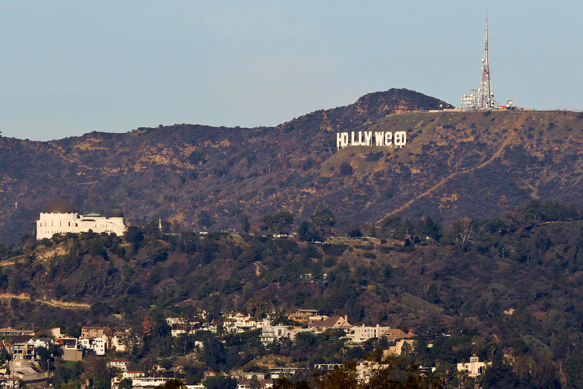 Hollyweed by Jesus Hands | Art-Pie